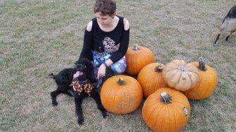 pumpkinpalooza12