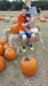 pumpkinpalooza28