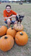 pumpkinpalooza8