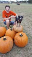 pumpkinpalooza9